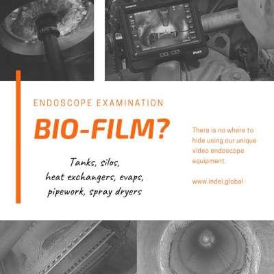 Biofilm Endoscope Survey